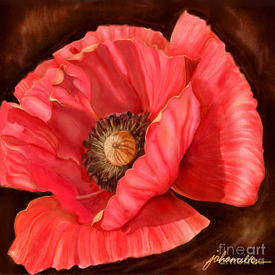 Red Poppy Two Art Print by Joan A Hamilton