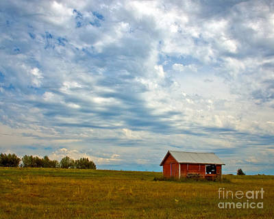 Photograph - Red Shed   by Chuck Flewelling