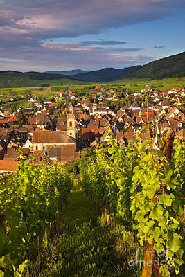 Haut-rhin Photograph - Riquewihr Alsace by Brian Jannsen