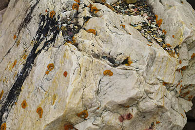 Photograph - Rock Art by Rhonda McDougall