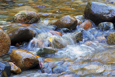 Photograph - Rocks In A Stream by Sharon Talson