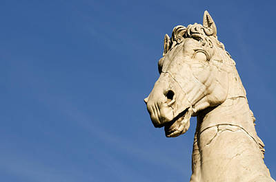 Close Up Horses Photograph - Roman Statue by Fabrizio Troiani