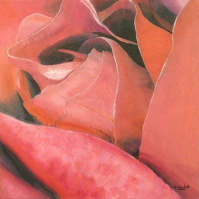 Painting - Rose by Claudia Goodell