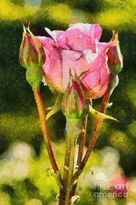 Macro Painting - Rose Flower by George Atsametakis