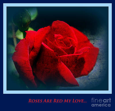 Roses Are Red My Love Art Print