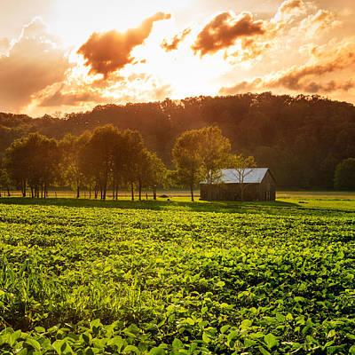 Kentucky Photograph - Rural Scene by Alexey Stiop