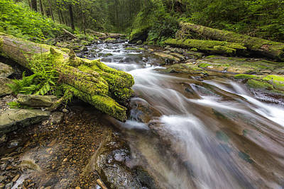 Rush Rush Print by Jon Glaser