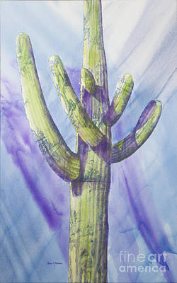 Saguaro In Winter Art Print