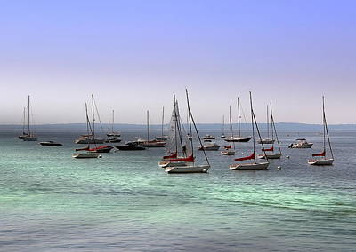 Photograph - Sailboats In Harbor by Anthony Dezenzio