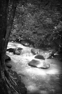 Photograph - Saluda River by Kelly Hazel