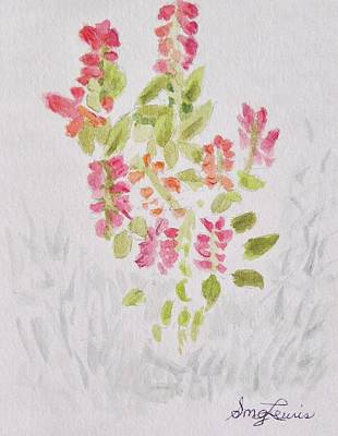 Shirley Drawing - Salvia And Rosemary by Shirley MG Lewis