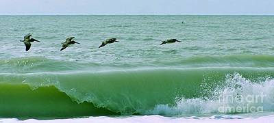 Photograph - Sanibel Pelicans by John Wartman