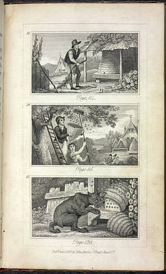 Scenes Of Industry Displayed In The Bee-h Art Print