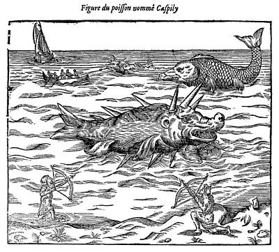 Insane Painting - Sea Monster, 16th Century by Granger