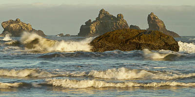 Sutton Photograph - Sea Stacks On The Beach At Bandon by William Sutton