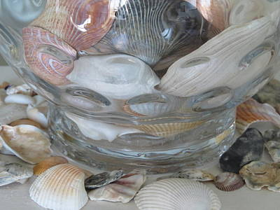 Shells In Bubble Bowl 2 Art Print