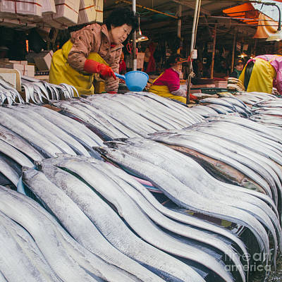 Silver Scabbard In Korea Busan Market Art Print by Tuimages
