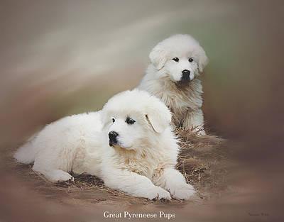 Pup Digital Art - Sitting Pretty by Bonnie Willis