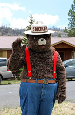 Smokey The Bear Art Print
