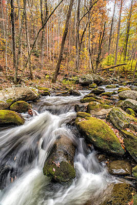 Photograph - Smoky Mountain Stream 2 by Victor Culpepper