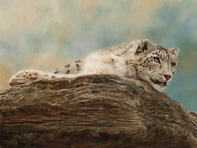 Snow Leopard Art Print by David Stribbling