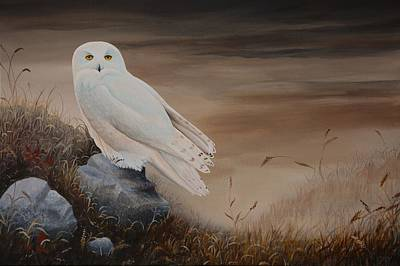 Painting - Snowy Owl by Charles Owens