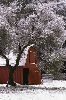 Photograph - Snowy Red Barn by Sherri Meyer