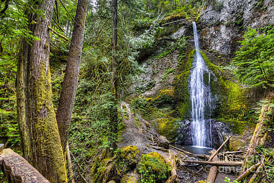 Olympic National Park Photograph - Sol Duc Falls by Twenty Two North Photography