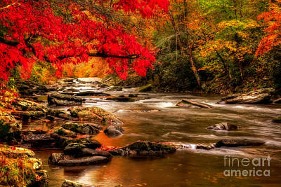 Photograph - Soothing Red Creek by Deborah Scannell