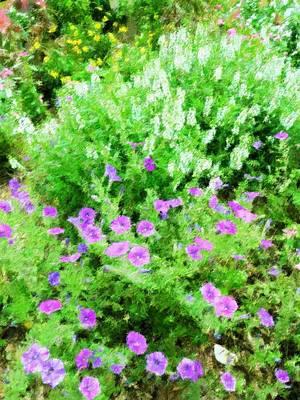 Mixed Media - Southern Wildflowers by Florene Welebny