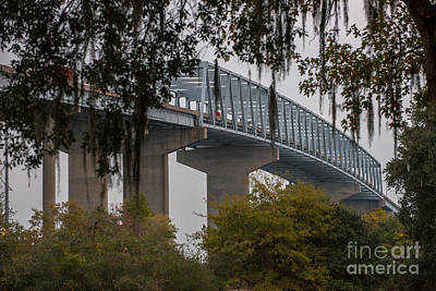 Photograph - Spanish Moss Bridge View by Dale Powell