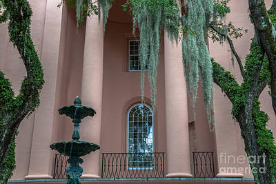 Photograph - Spanish Moss by Dale Powell