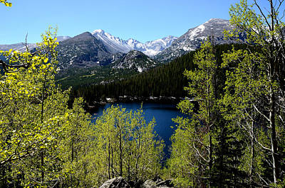 Spring At Bear Lake Art Print by Tranquil Light  Photography
