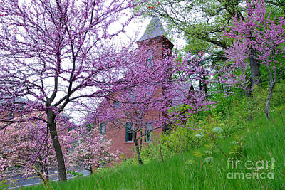 Spring Colors Print by Edward Sobuta