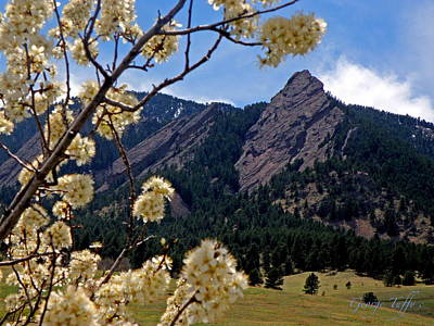 Photograph - Spring Flatirons by George Tuffy