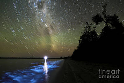 Star Trails And Bioluminescence Print by Philip Hart