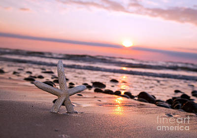 Fish Photograph - Starfish On The Beach At Sunset by Michal Bednarek