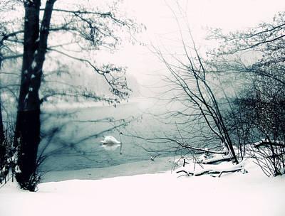 Winter Landscapes Photograph - Stark by Jessica Jenney