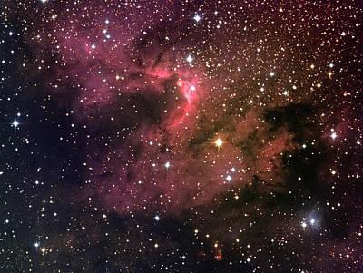 Photograph - Starry Sky by Naoyuki Noda