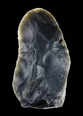 Biface Photograph - Stone Age Hand Axe by Alfred Pasieka