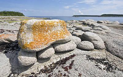 Photograph - Stone Tortoise by Arkady Kunysz
