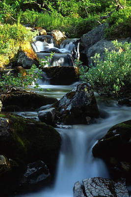 Amy Weiss - Stream in mountain by Sasas Photography