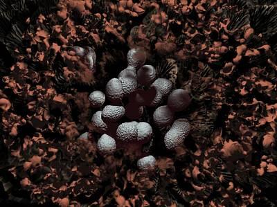 Streptococcus Pyogenes Bacteria Art Print