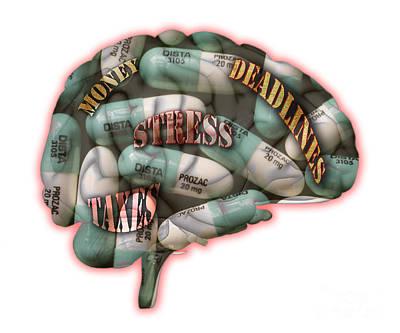 Stress Art Print by Scott Camazine