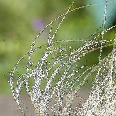 Summer Grass Art Print by Artist and Photographer Laura Wrede