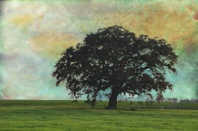 Pasture Scenes Digital Art - Summer Idyll by Jan Amiss Photography