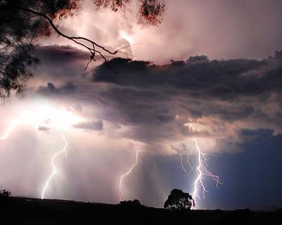 Animal Watercolors Juan Bosco - Summer Lightning Strikes  2 by Christopher Edmunds