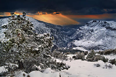 Sun Rays Art Print by Guido Montanes Castillo