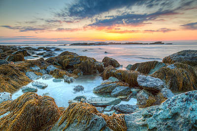 Rhode Island Photograph - Sunrise At Sachuest Wildlife Refuge by Joshua McDonough