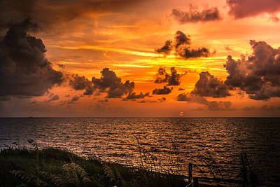 Photograph - Sunrise  by Louis Ferreira
